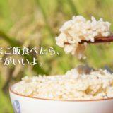 玄米ご飯食べたら調子がいいよ