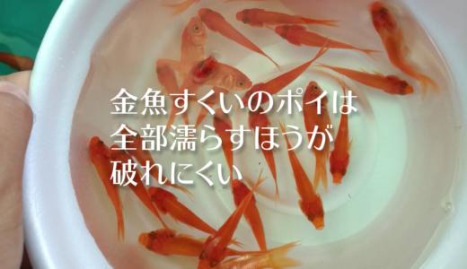 金魚すくいのポイは一部だけでなくすべて全部濡らすほうが破れにくい(※金魚飼いました)