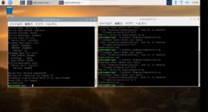 Raspberry Pi触ってたら必要になってきたのでPythonとコマンドラインとnode.jsをやっていく